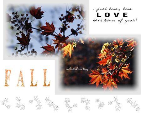 Fall 10.15